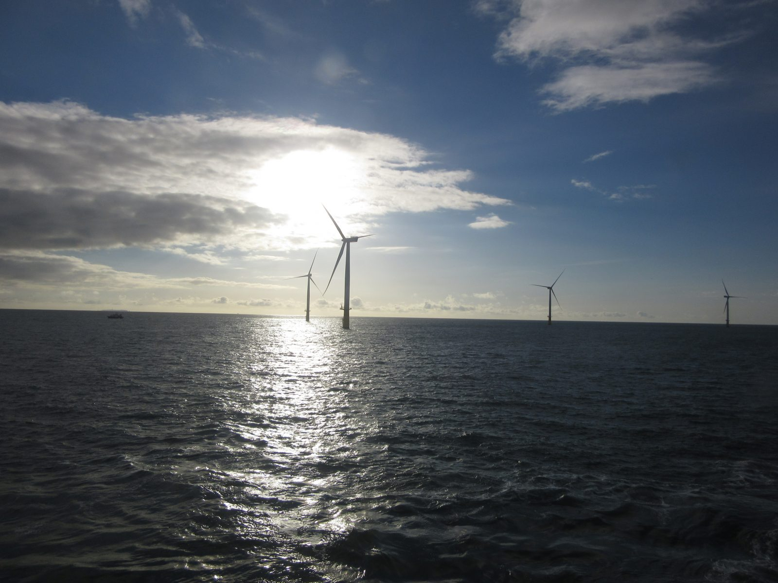 Reencon – Site Management Von Offshore Windpark
